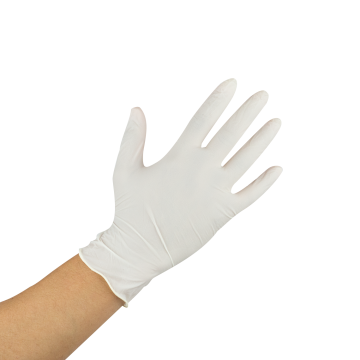 Karat Latex Powder-Free Gloves (Clear) - Medium - 1,000 ct