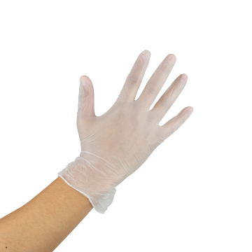 Karat Vinyl Powder-Free Gloves (Clear) - Small - 1,000 ct, FP-GV1006