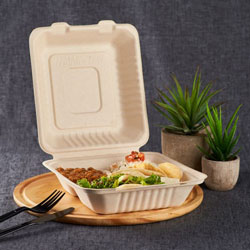 Hinged To-Go Containers